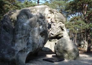 Fontainebleau l'éléphant