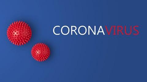 Information relatif aux actions pour la non propagation du Corona virus sur les murs d'escalades